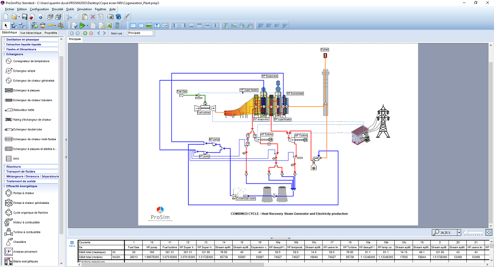 Cogeneration simulation process